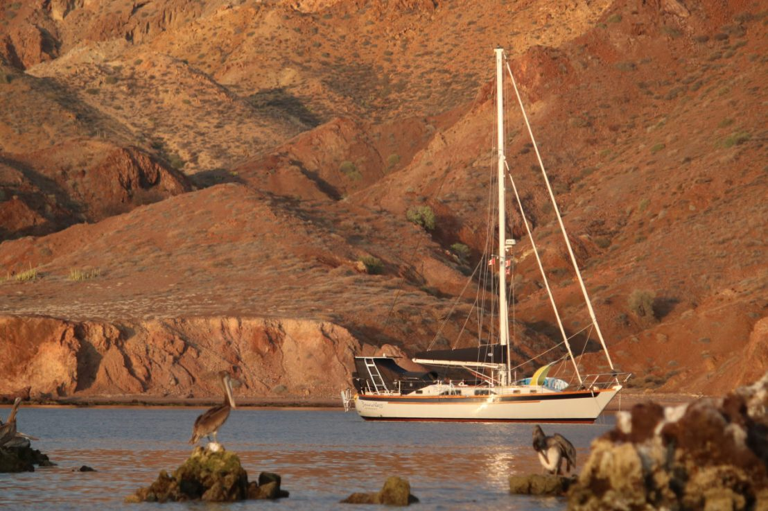 SEA OF CORTEZ – LEG SIX: Santa Rosalía back to La Paz